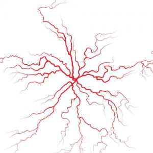 pajączek - rysunek